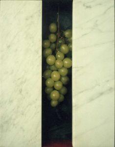druiven met marmer
